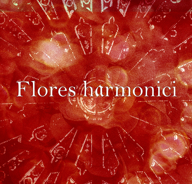 flores-harmonici-carr