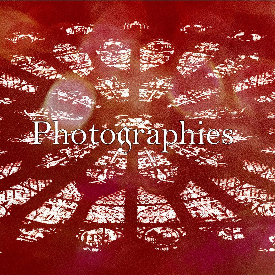 photographies-flores